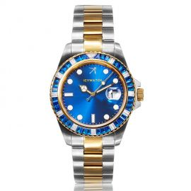 40mm Iced Blue Luminous Dial Two-tone Watch
